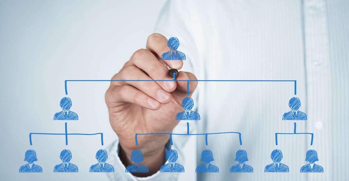 Company Hierarchy Hero.jpg